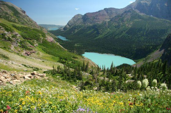 アメリカ北部 国立公園の旅 2005 day7